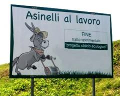 CARTELLO-ASINELLI-AL-LAVORO